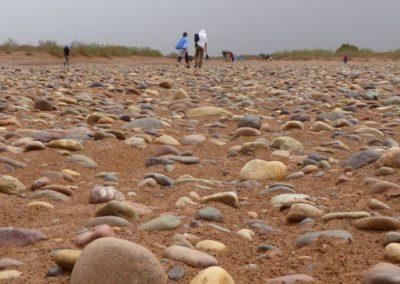 Traversée du désert de pierres au Maroc