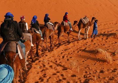 Balade à dos de dromadaire dans le désert marocain
