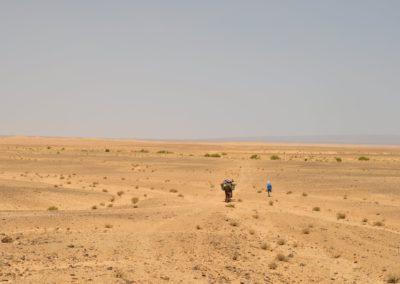 Randonnée dans le désert