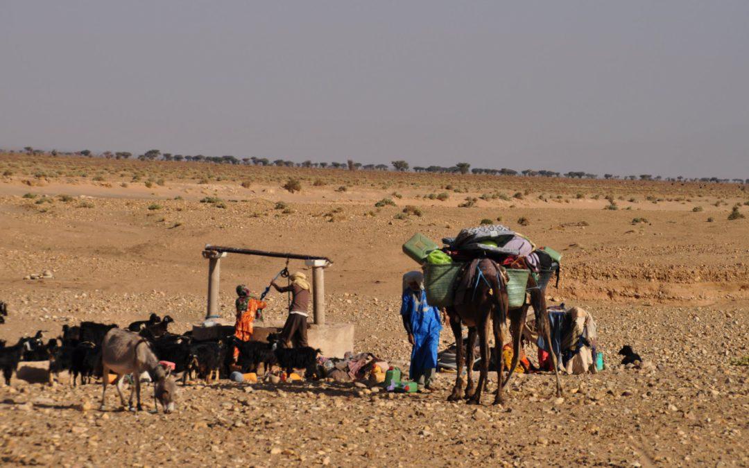 La vie des nomades