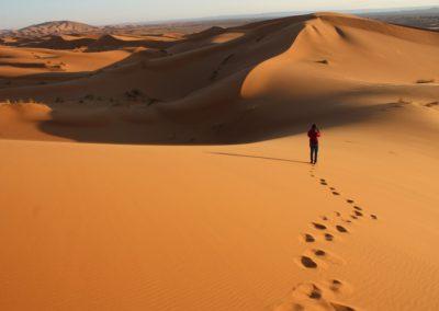 Au milieu des dunes